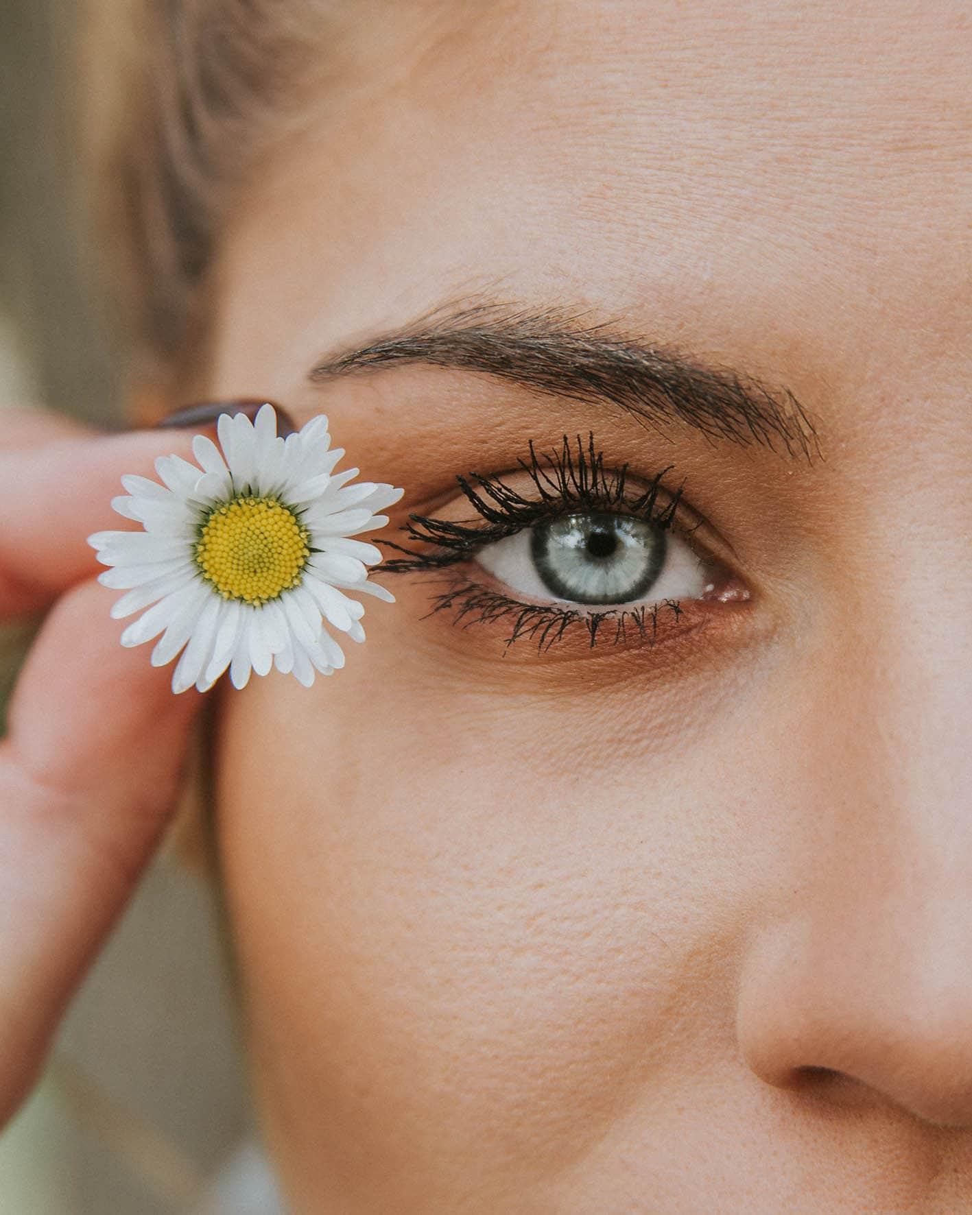 bel iris et paquerette en iridologie