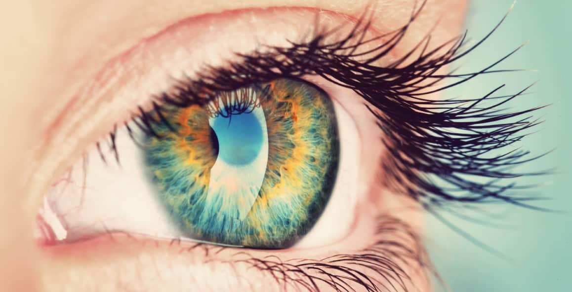 Iris bleu pour iridologie