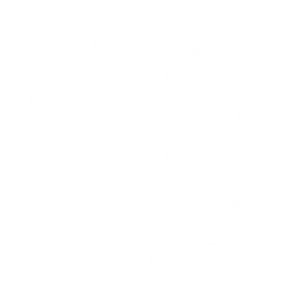 Logo blanc Laïla Boyer Naturopathe à Pessac